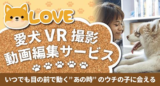 いつでも目の前で動く「あの時」のウチの子に会える:愛犬VR撮影動画編集サービス